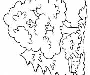 Coloring pages Tree in the forest