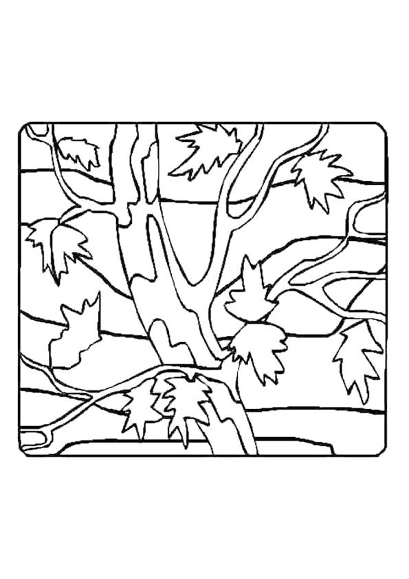 Free coloring and drawings Tree with Leaves Coloring page