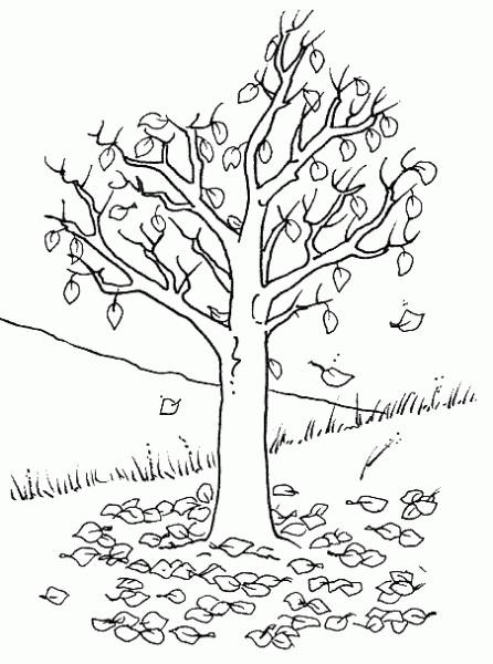 Free coloring and drawings Tree without Cutting Leaves Coloring page