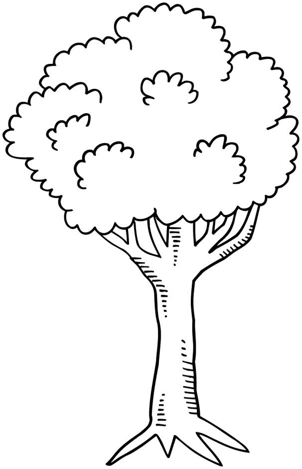 Free coloring and drawings Trees easy to color Coloring page