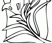 Coloring pages Graphic Tulip