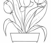 Coloring pages Magic tulip