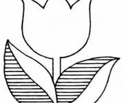 Coloring pages Striped tulip