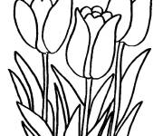 Coloring pages Terrific tulips