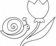 Coloring pages Tulip and Snail