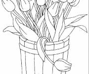 Coloring pages Tulip Flowerpot