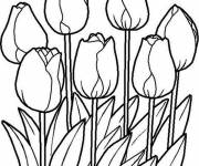 Coloring pages Tulip in the Vegetable Garden