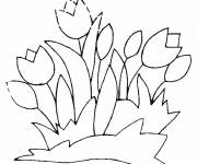 Coloring pages Tulips for Decoration