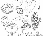Coloring pages Vegetable