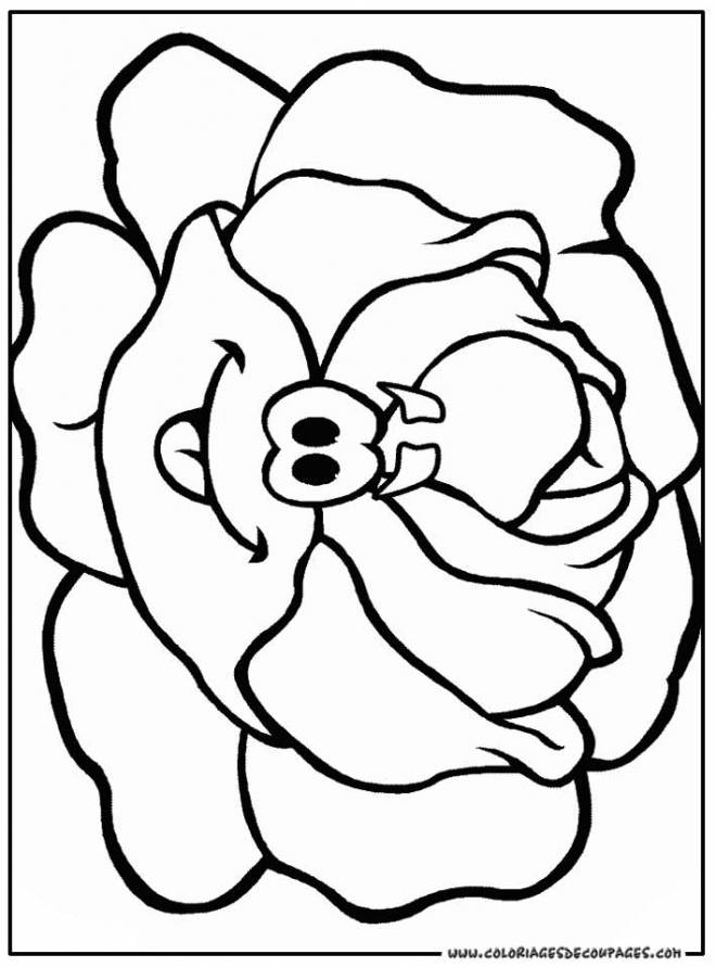 Free coloring and drawings Funny Cabbage Vegetable Coloring page