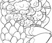 Coloring pages Salad vegetables