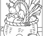 Coloring pages Vegetables for decoration
