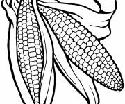 Coloring pages Vegetables in black