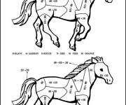 Coloring pages Addition Splendid Horse