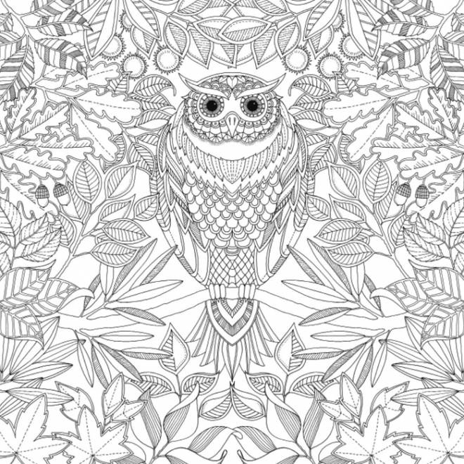 Free coloring and drawings Art Therapy Anti-Stress with owl Coloring page