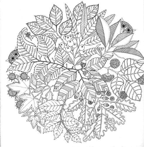Free coloring and drawings Therapeutic Anti-Stress Coloring page