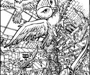 Coloring pages Difficult owls