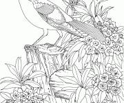 Coloring pages Difficult Stylized Bird