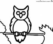Coloring pages Owl on the rope