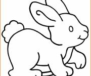 Coloring pages Rabbit Easy to color