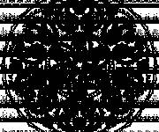 Coloring pages Adult Mandala in black