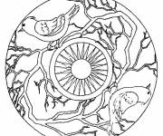 Coloring pages Mandala Birds and Sun