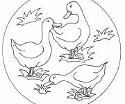 Coloring pages The Ducks