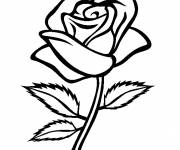 Coloring pages Pink flower
