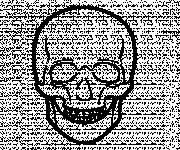 Coloring pages Easy skull