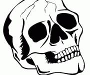 Coloring pages Skull