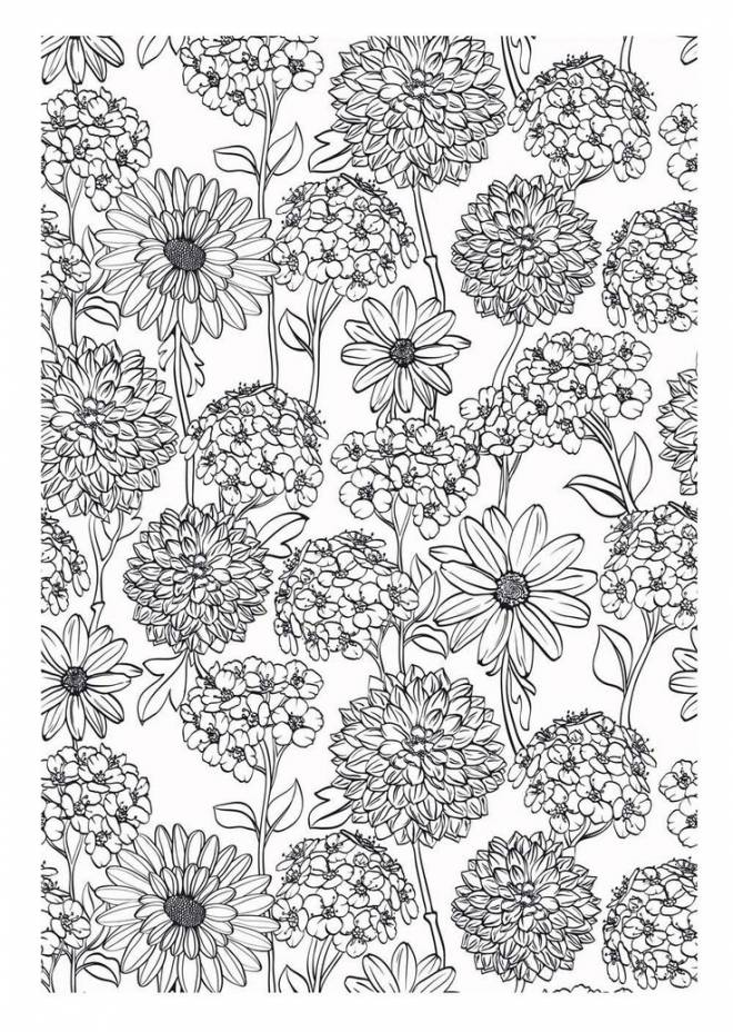 Free coloring and drawings Adult Garden Flowers to download Coloring page