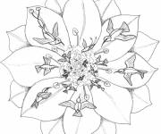 Coloring pages Flower and Birds to relax