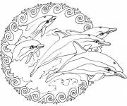 Coloring pages Mandala Dolphins Relaxing