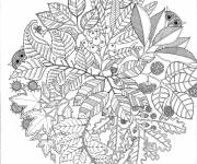 Free coloring and drawings Mandala to relax Coloring page