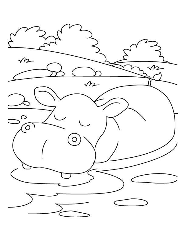 Free coloring and drawings Relaxing african animals Coloring page