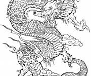 Coloring pages Adult Difficult Dragon