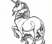 Coloring pages Unicorn online