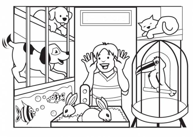 Free coloring and drawings Vector animal store Coloring page
