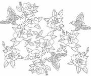 Coloring pages Inspiration Zen Flowers and Butterfly