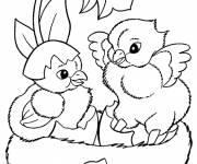 Coloring pages Beautiful chicks
