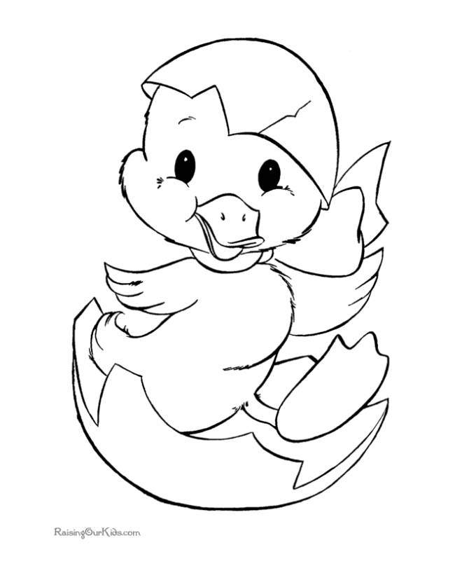 Free coloring and drawings Chick comes out of its Egg Coloring page