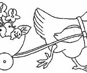 Coloring pages Chicken and its maternal chicks
