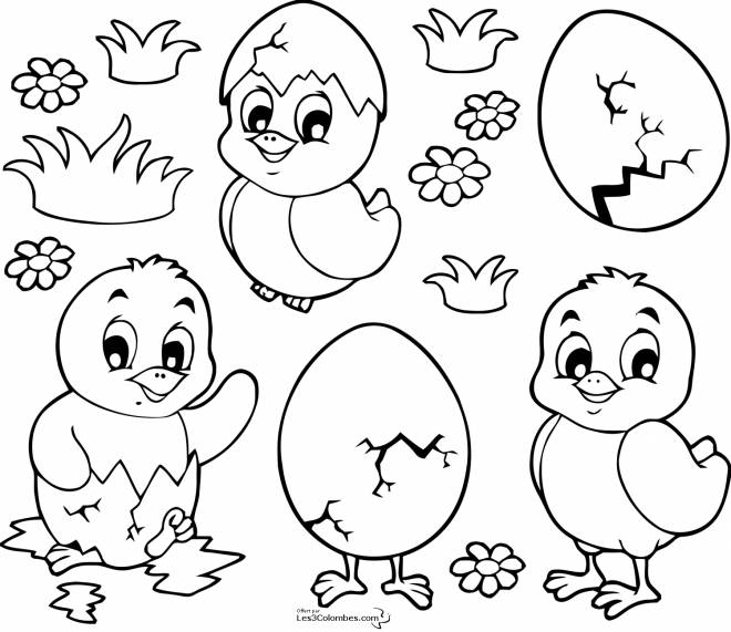 Free coloring and drawings Easter chicks for download Coloring page