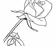 Free coloring and drawings A Flower for our dear Mothers Coloring page