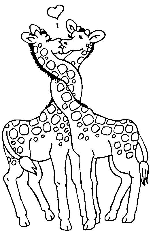 Free coloring and drawings Valentine's Day Giraffe in love Coloring page