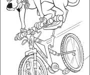 Coloring pages Cartoon cyclist dog