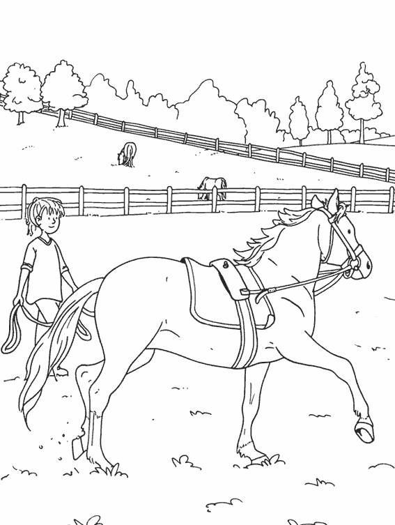 Free coloring and drawings A beautiful horse is training Coloring page