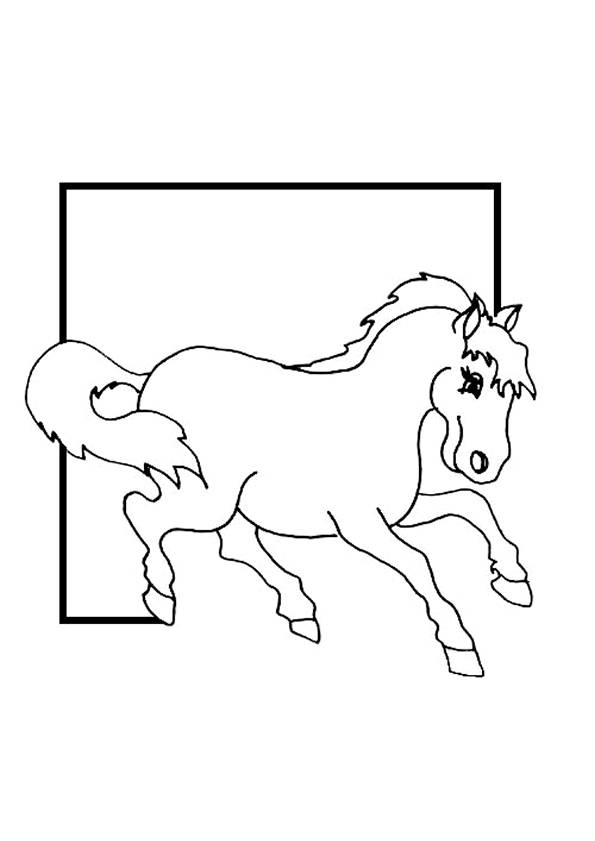 Free coloring and drawings A framed horse Coloring page