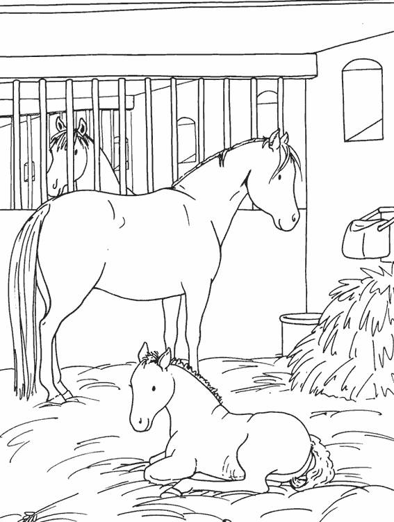 Free coloring and drawings A horse and its cub in the stable Coloring page