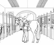 Coloring pages Girl and Horse
